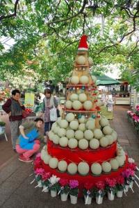 melon-tree_comm